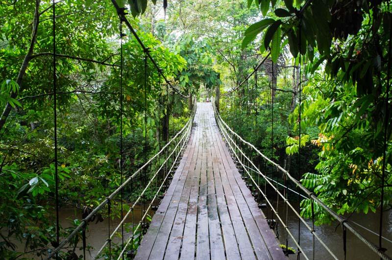 Hängebrücke zum Eingang des Nationalparks in Mulu