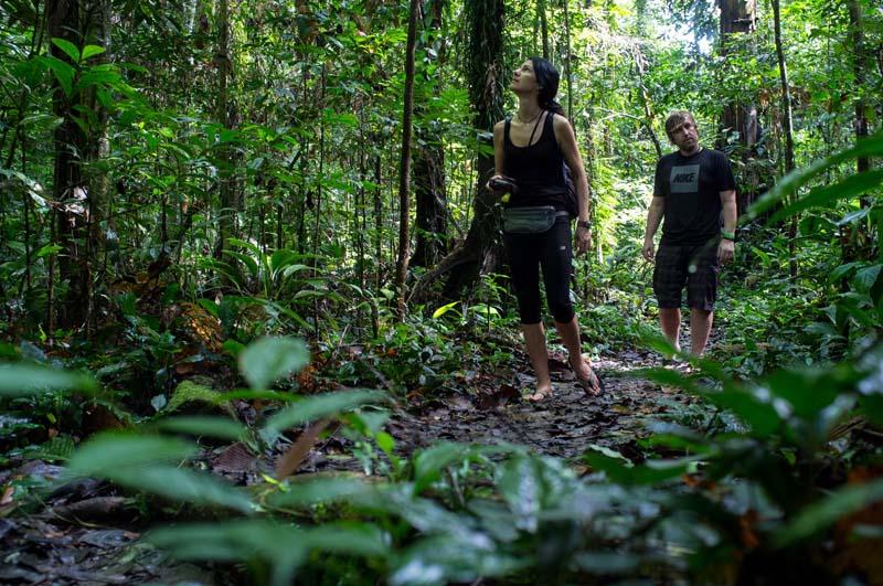 Wanderung durch den Mulu Nationalpark