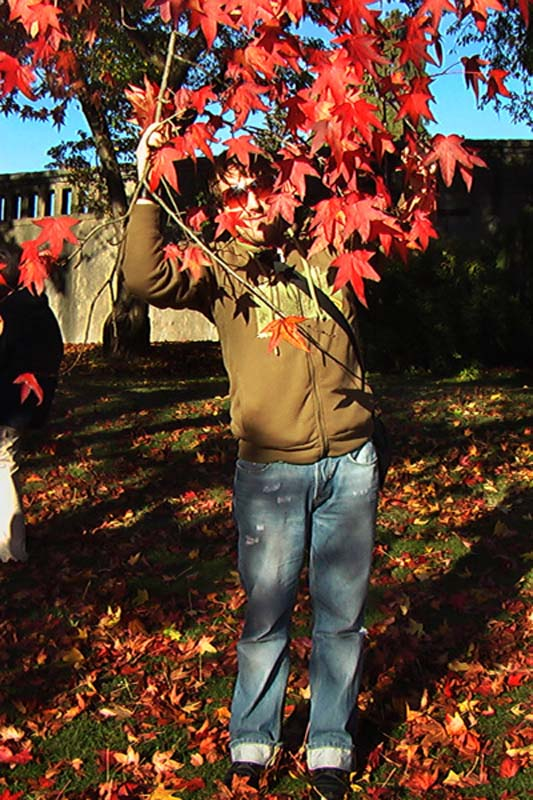 Bunki mit dem Wahrzeichen Kanadas, dem roten Ahornblatt, Vancouver, British Columbia, Kanada