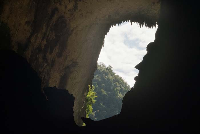 Das Gesicht Lincolns, Mulu, Borneo Malaysia