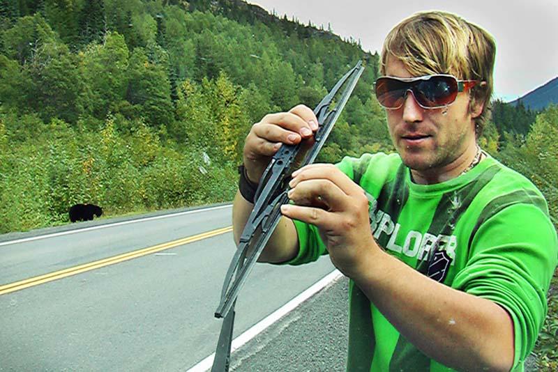 Der Schwarzbär im Hintergrund lenkt Bunki nicht ab, Alaska, USA