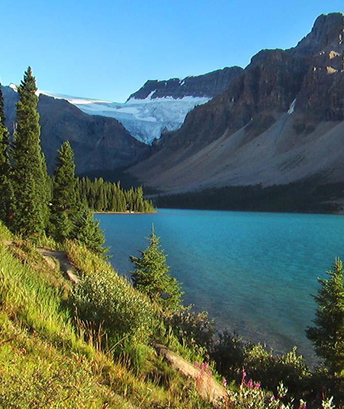 Einer der vielen Gletscher in den Rocky Mountains, Alberta, Kanada