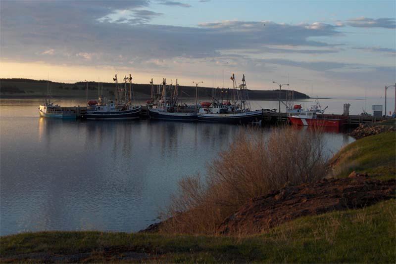 Fischerboote in einer Bucht Cape Bretons, Nova Scotia, Kanada