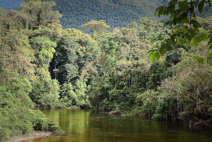 Fluss und Regenwald vor dem Haus, Mulu Nationalpark, Borneo, Malaysia