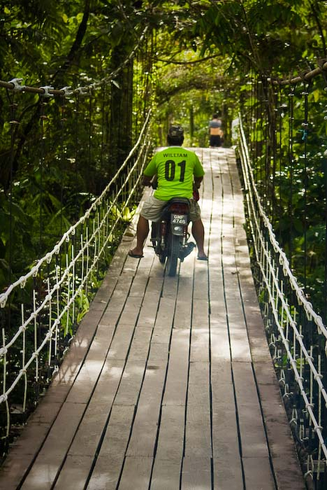 Hängebrücke zum Hauptquartier, Mulu Nationalpark, Borneo, Malaysia