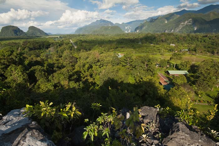 Mulu Nationalpark, Borneo Malaysia