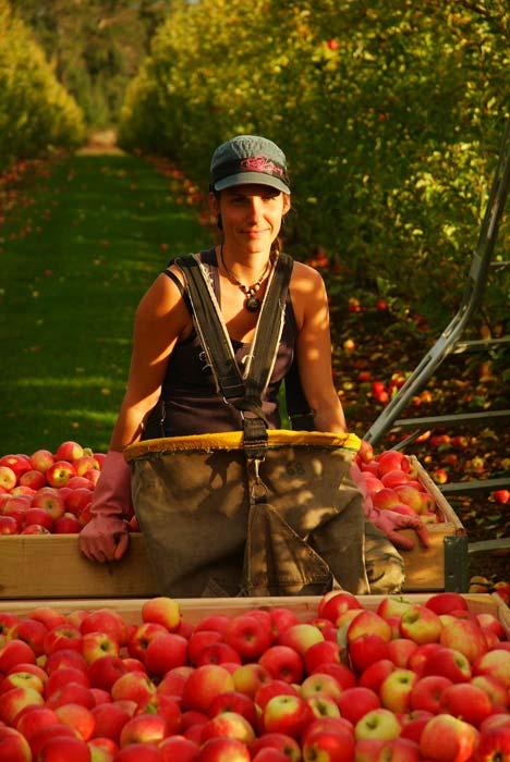 Munjimup, Apfelernte, Anne ruht sich aus