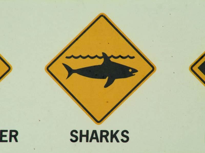 Typisches Warnschild Australiens