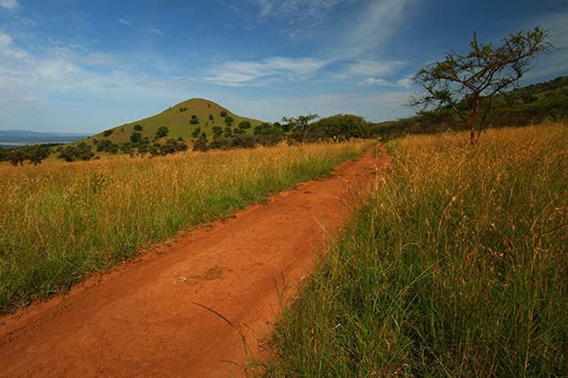 Akagera Nationalpark, Ruanda