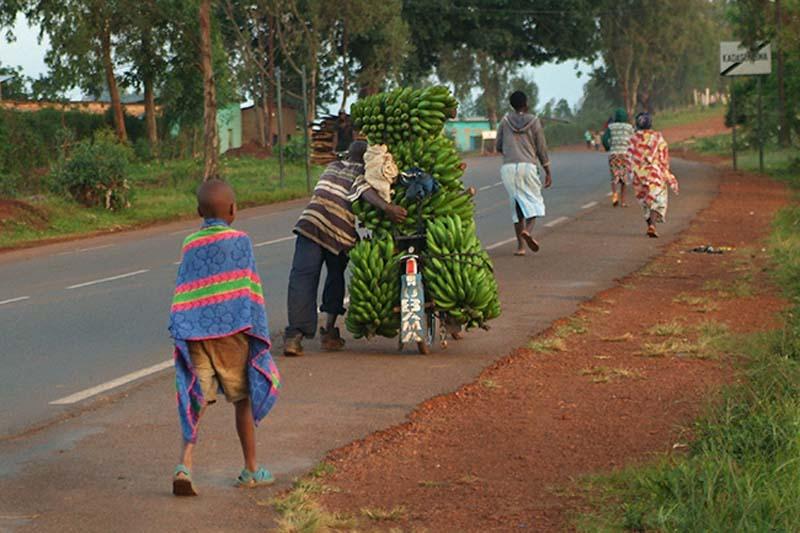 Bananenlieferung, Ruanda