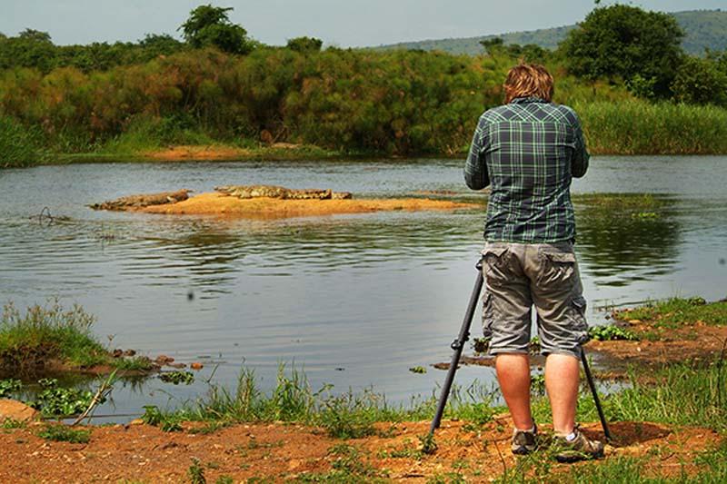 Bunki filmt Krokodile, Akagera Park, Ruanda